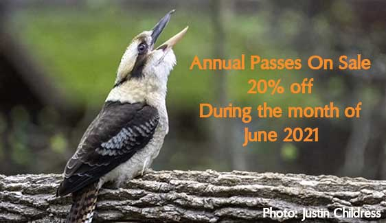 Annual Passes On Sale!