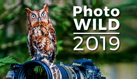 Register for Spring PhotoWILD before it sells out!