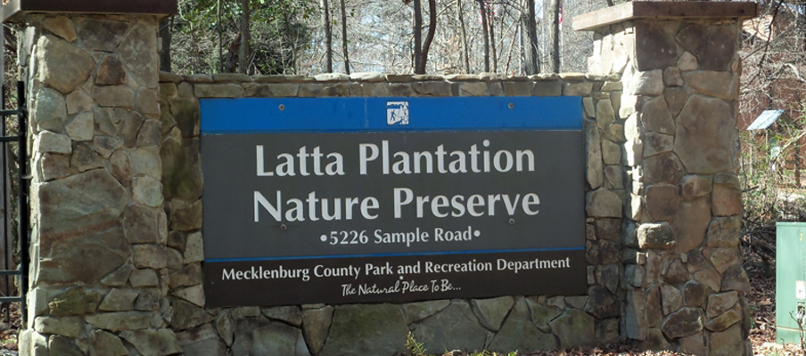 Latta Plantation Nature Preserve Detail